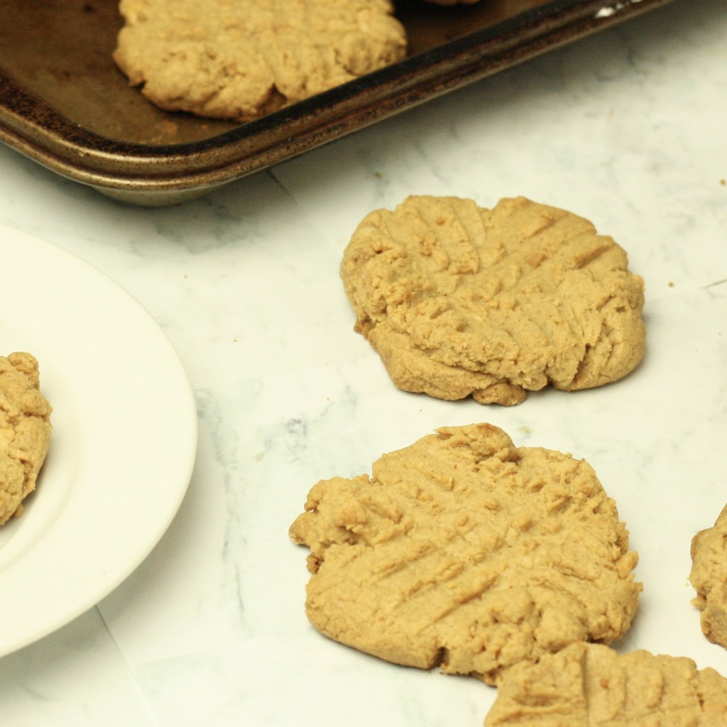 Low Calorie Peanut Butter Cookies Recipe  low calorie peanut butter cookies