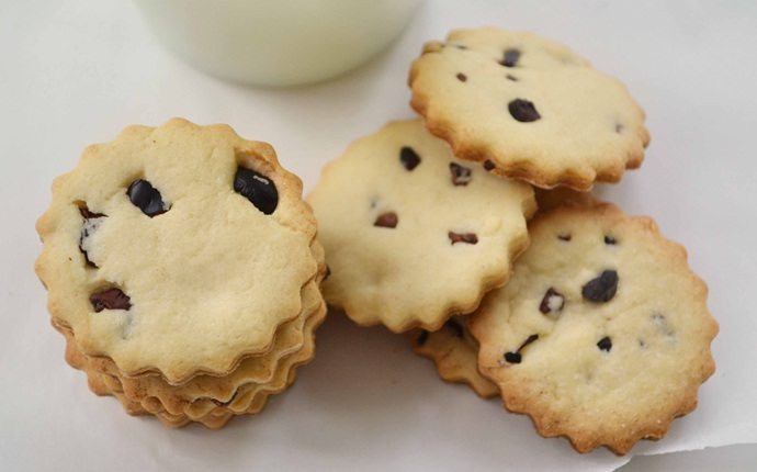 Low Calorie Sugar Cookies  20 Ideas Low Calorie Cookies Easy Homemade Recipes