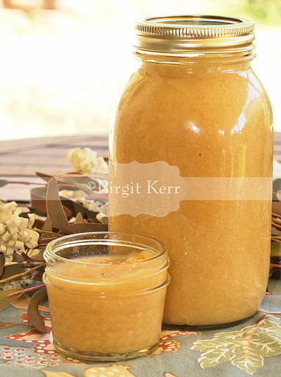 Low Carb Applesauce  Birgit s Daily Bytes Low Carb Crockpot Applesauce LC GF