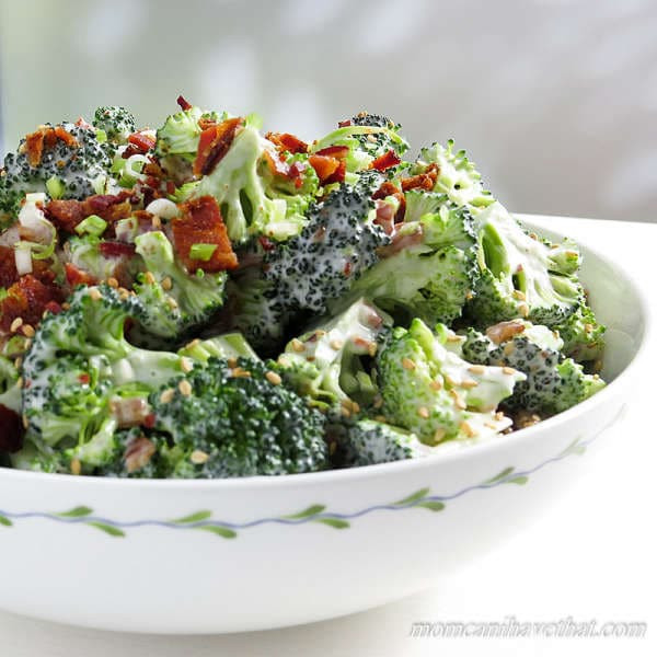 Low Carb Broccoli Salad  Easy Low Carb Broccoli Salad With Bacon