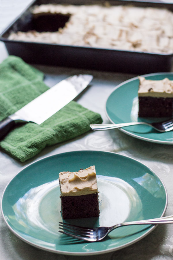 Low Carb Coconut Flour Brownies  Gluten Free Low Carb Coconut Flour Brownies