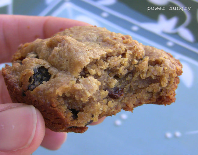 Low Carb Flax Seed Recipes  flax seed cookie recipes