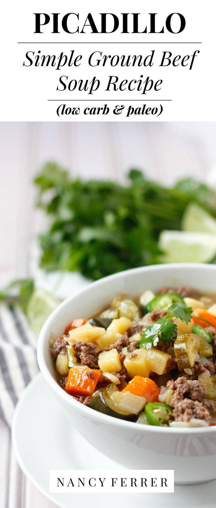 Low Carb Ground Beef Soup  Picadillo