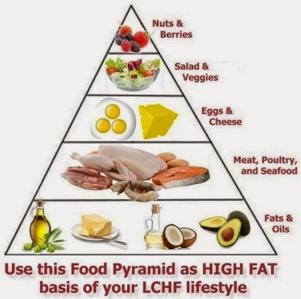 Low Carb High Fat Diet Recipes  high fat low carb Basic Growth