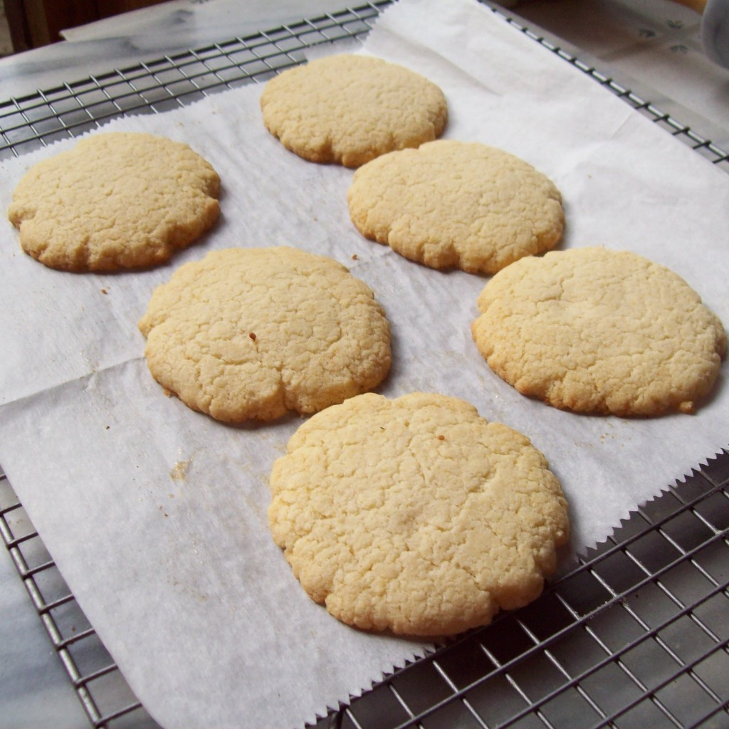 Low Carb Low Sugar Cookies  Low Carb Sugar Free Frosted Shortbread Cookie Recipe