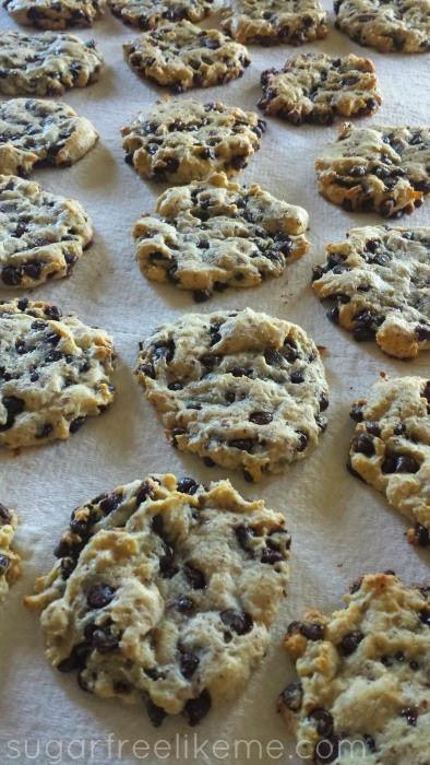 Low Carb Low Sugar Cookies  Sugar Free Like Me Low Carb Chocolate Chip Cookies