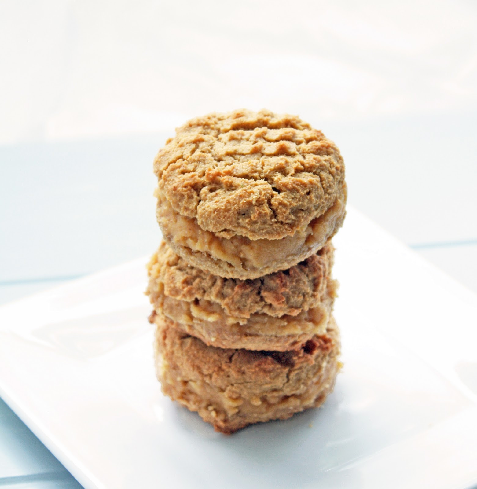 Low Carb Pb2 Recipes  low carb peanut butter cookies with pb2
