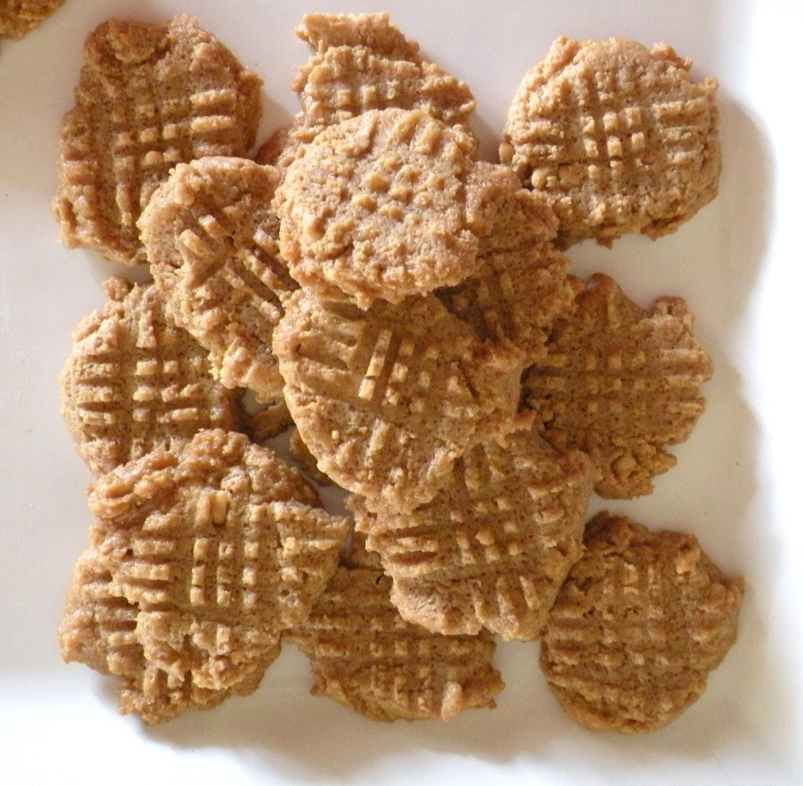 Low Carb Peanut Butter Cookies Coconut Flour  low carb peanut butter cookies coconut flour