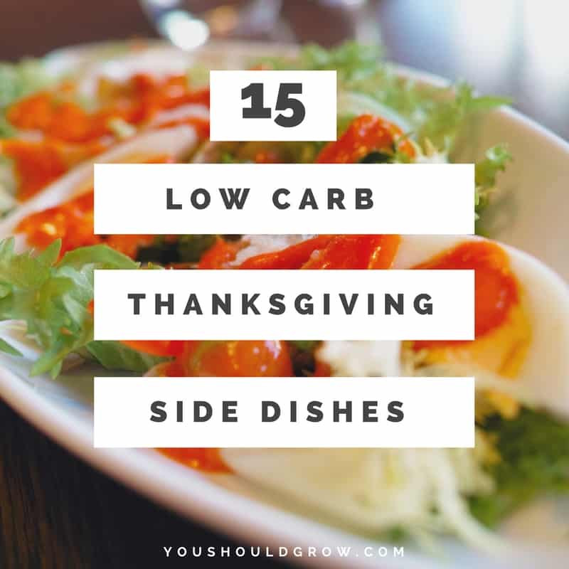 Low Carb Thanksgiving Side Dishes  Low Carb Thanksgiving Side Dishes