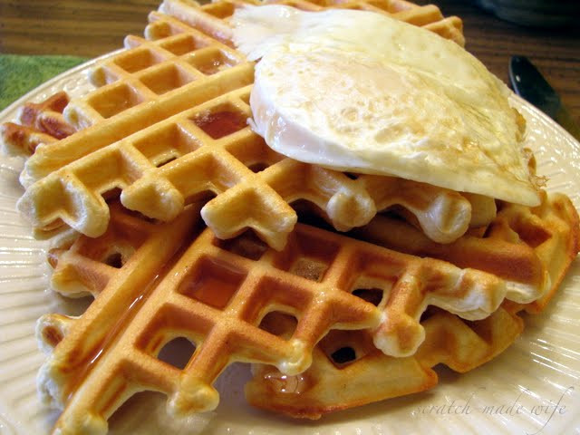 Low Carb Waffles Recipe  scratch made wife Low Carb Waffles