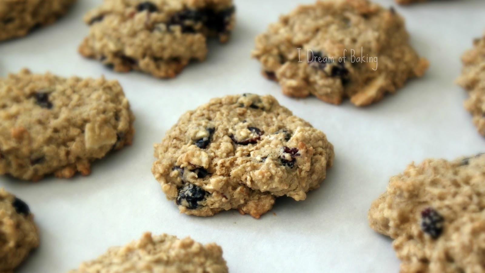 Low Cholesterol Oatmeal Cookies  Baker s Corner Low Fat Oatmeal Cookies Habibi Halaqas