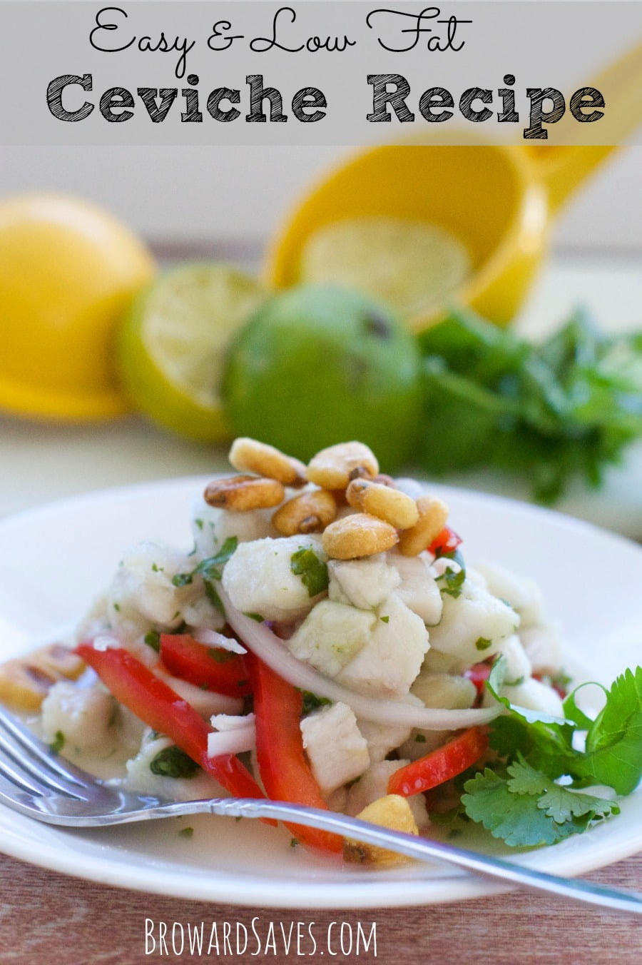 Low Fat Appetizer Recipes  Healthy Easy Ceviche Recipe Living Sweet Moments