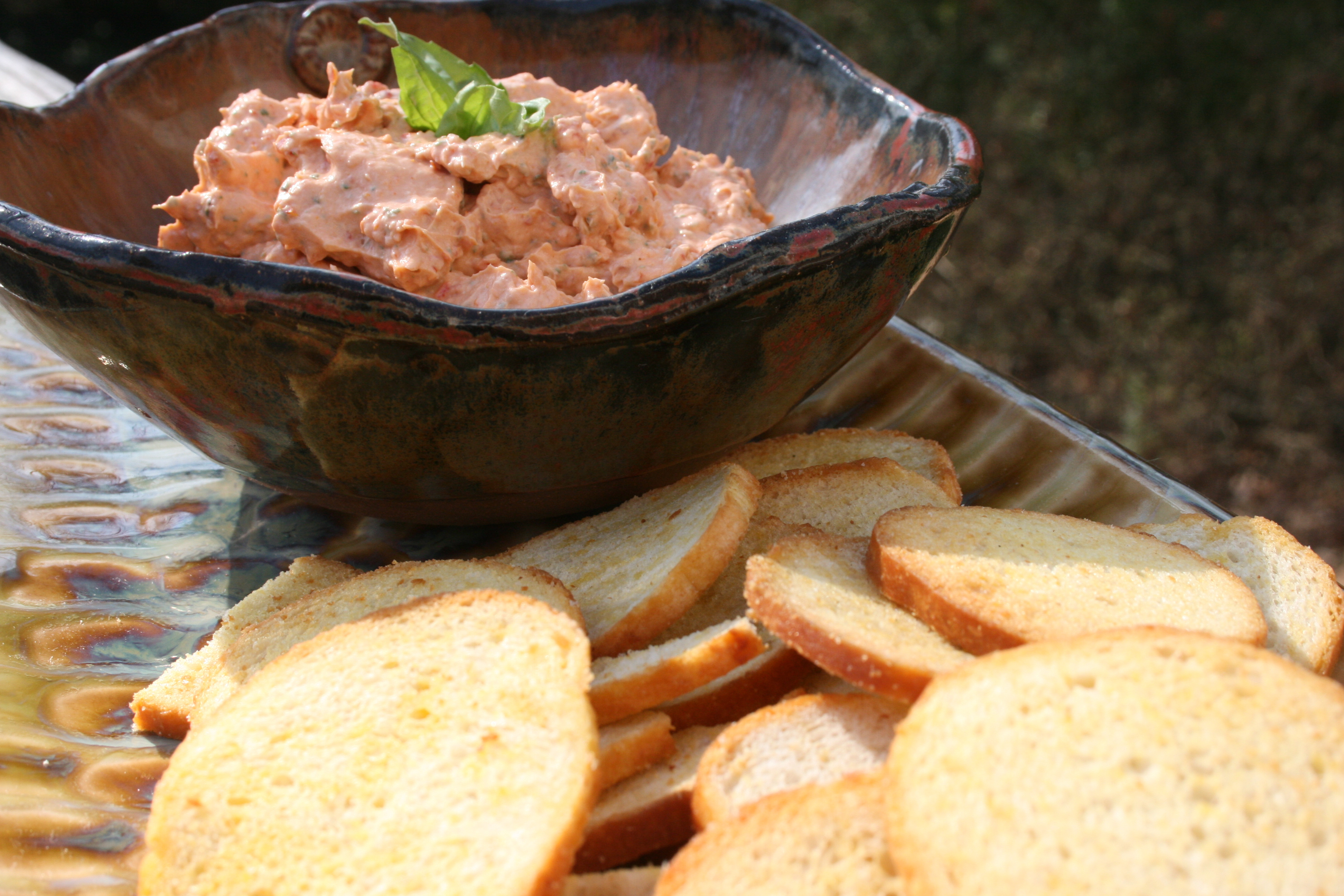 Low Fat Appetizer Recipes  Easy Low Fat Appetizer Sun Dried Tomato Dip