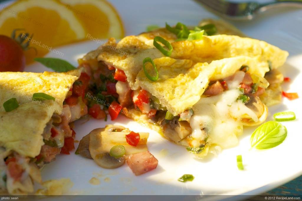 Low Fat Breakfast Recipes  Low Fat Breakfast Omelet Recipe