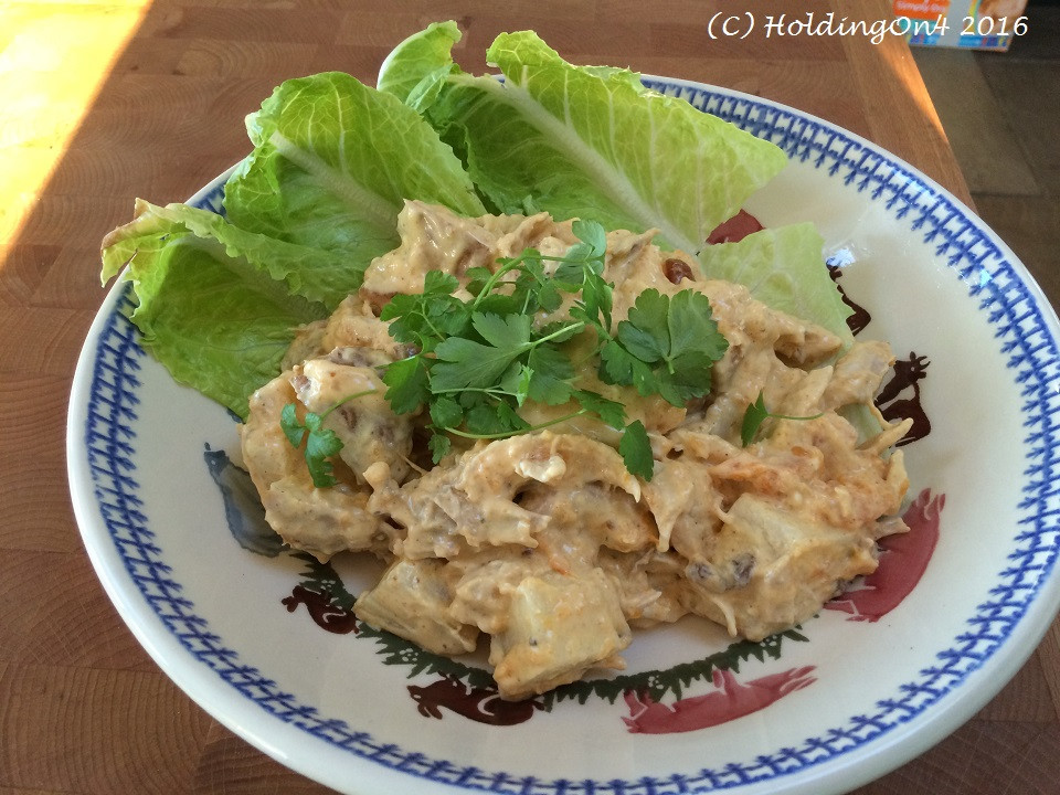Low Fat Chicken Salad  Holding Gluten free low fat Cecily Chicken Salad