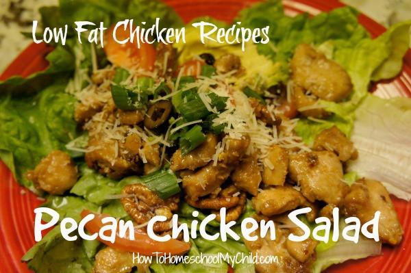 Low Fat Chicken Salad Recipe  Pecan Chicken Salad Low Fat Recipe Christian Parenting