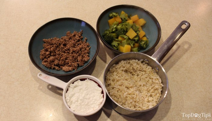 Low Fat Dog Food Recipes  Low Fat Homemade Dog Food Recipe for Different Health