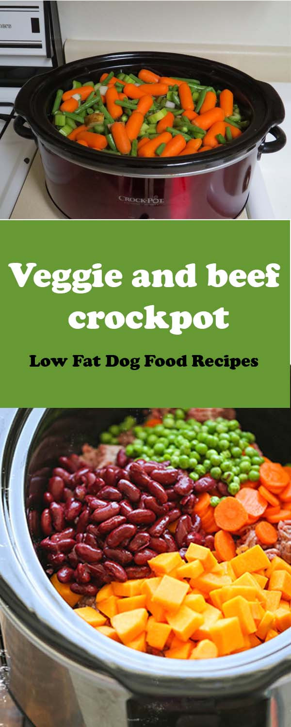 Low Fat Dog Food Recipes  DIY Low Fat Dog Food Recipes 7 Homemade Canine