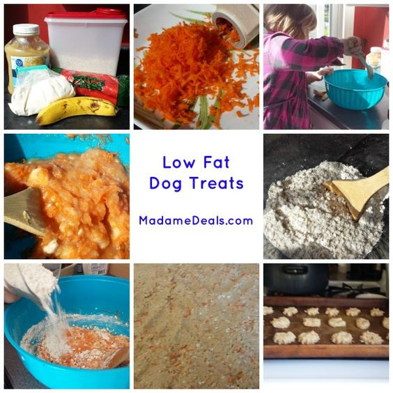 Low Fat Dog Food Recipes  Low Fat Dog Treats