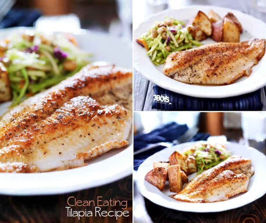 Low Fat Food Recipes  Low Fat Tilapia Recipes Healthy