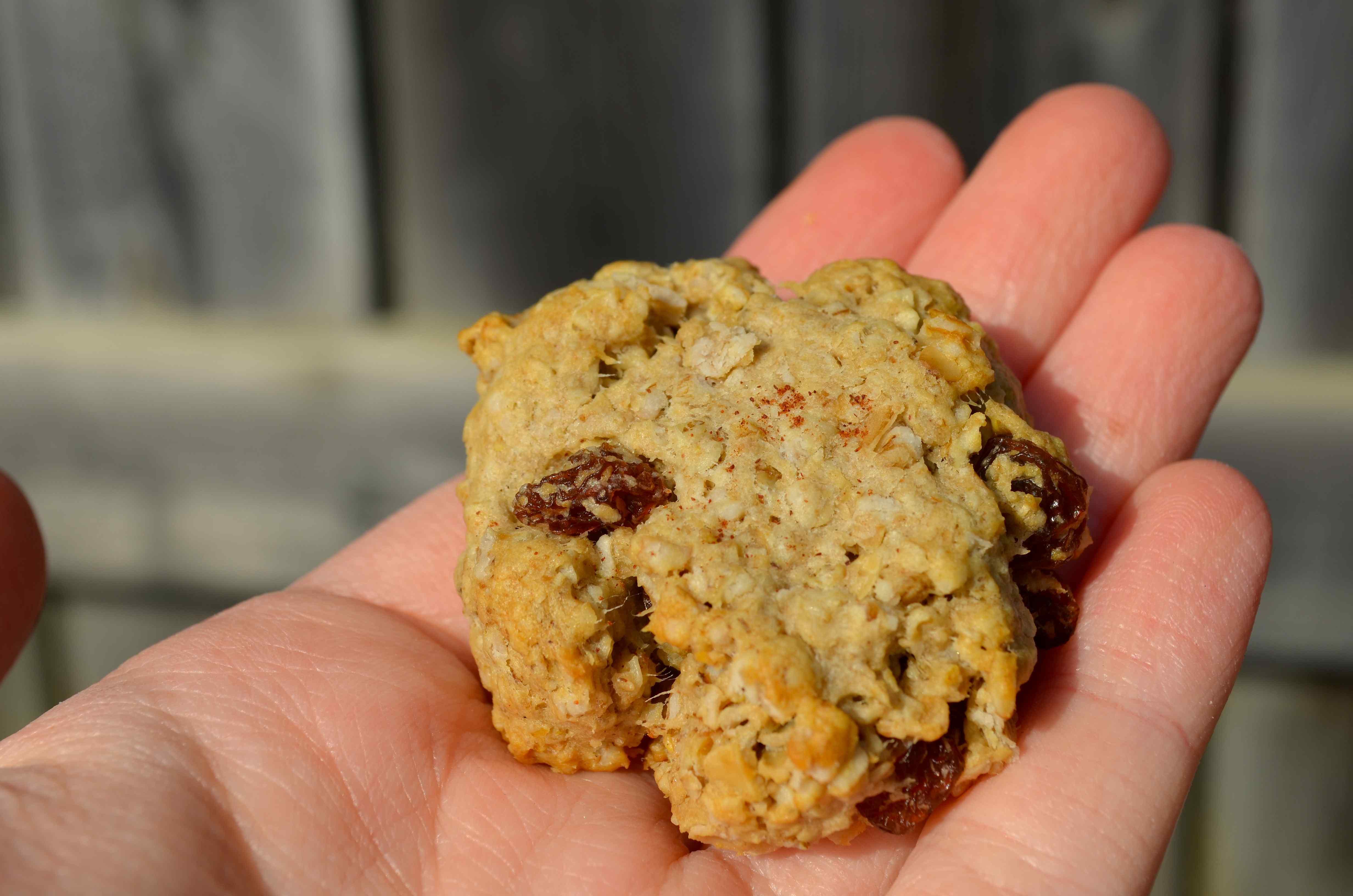 Low Fat Oatmeal Cookies  Low Fat Oatmeal Raisin Cookie Mega Dildo Insertion