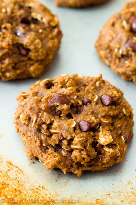 Low Fat Oatmeal Raisin Cookies  Healthy Oatmeal Raisinet Cookies Sallys Baking Addiction