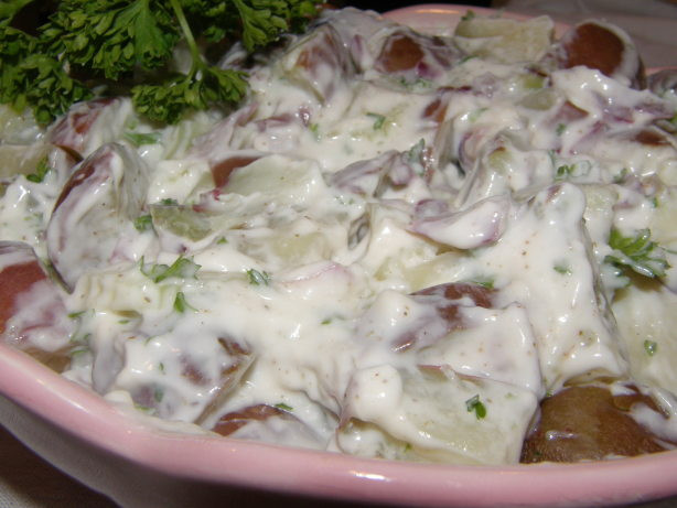 Low Fat Potato Recipes  Red Potato Salad Low fat Recipe Red Food