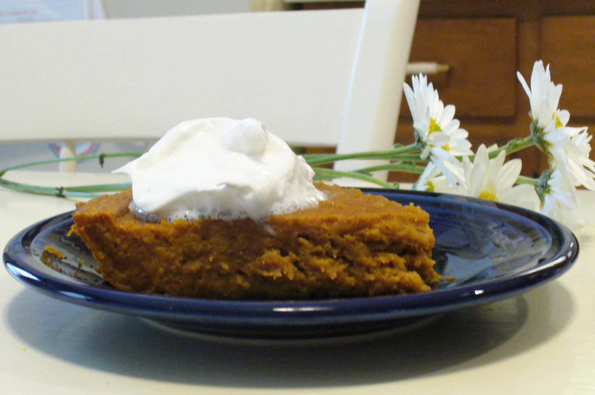 Low Fat Pumpkin Recipes  Low fat pumpkin pie recipe All recipes UK