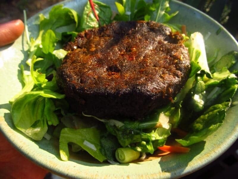 Low Fat Vegan Recipes  Raw Vegan Veggie Burger recipe Low fat raw vegan