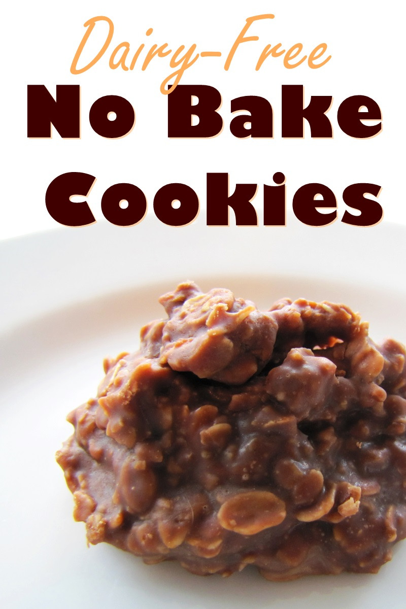 No Cook Vegetarian Recipes  Chocolate No Bake Cookies Recipe Naturally Vegan & Dairy
