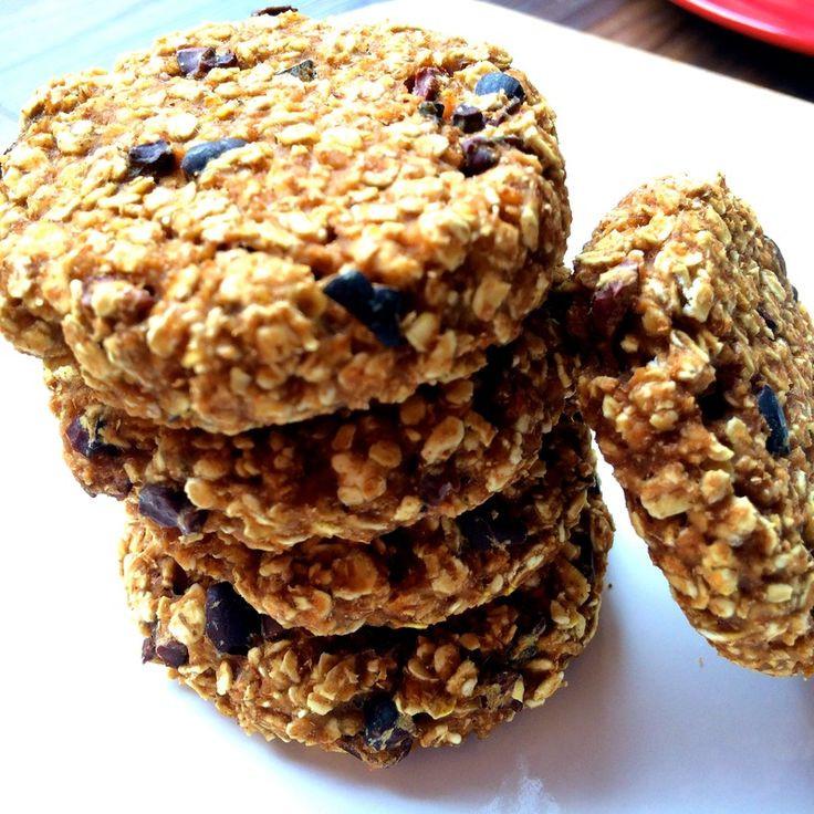 Oatmeal Cookies For Diabetics  diabetic oatmeal cookies with stevia