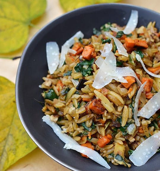 Orzo Recipes Vegetarian  341 best a feast for the eyes images on Pinterest