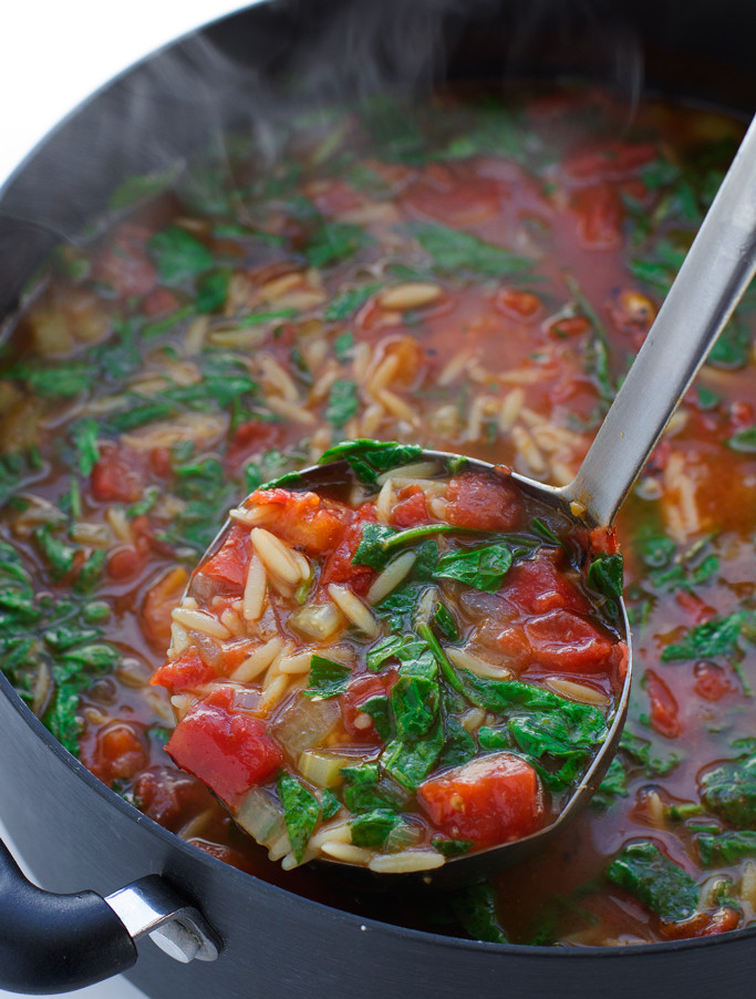 Orzo Recipes Vegetarian  Italian Orzo Tomato Spinach Soup Recipe