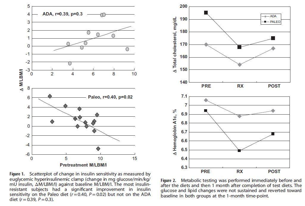 Paleo Diet For Diabetics  Paleo t better than American Diabetes Association t