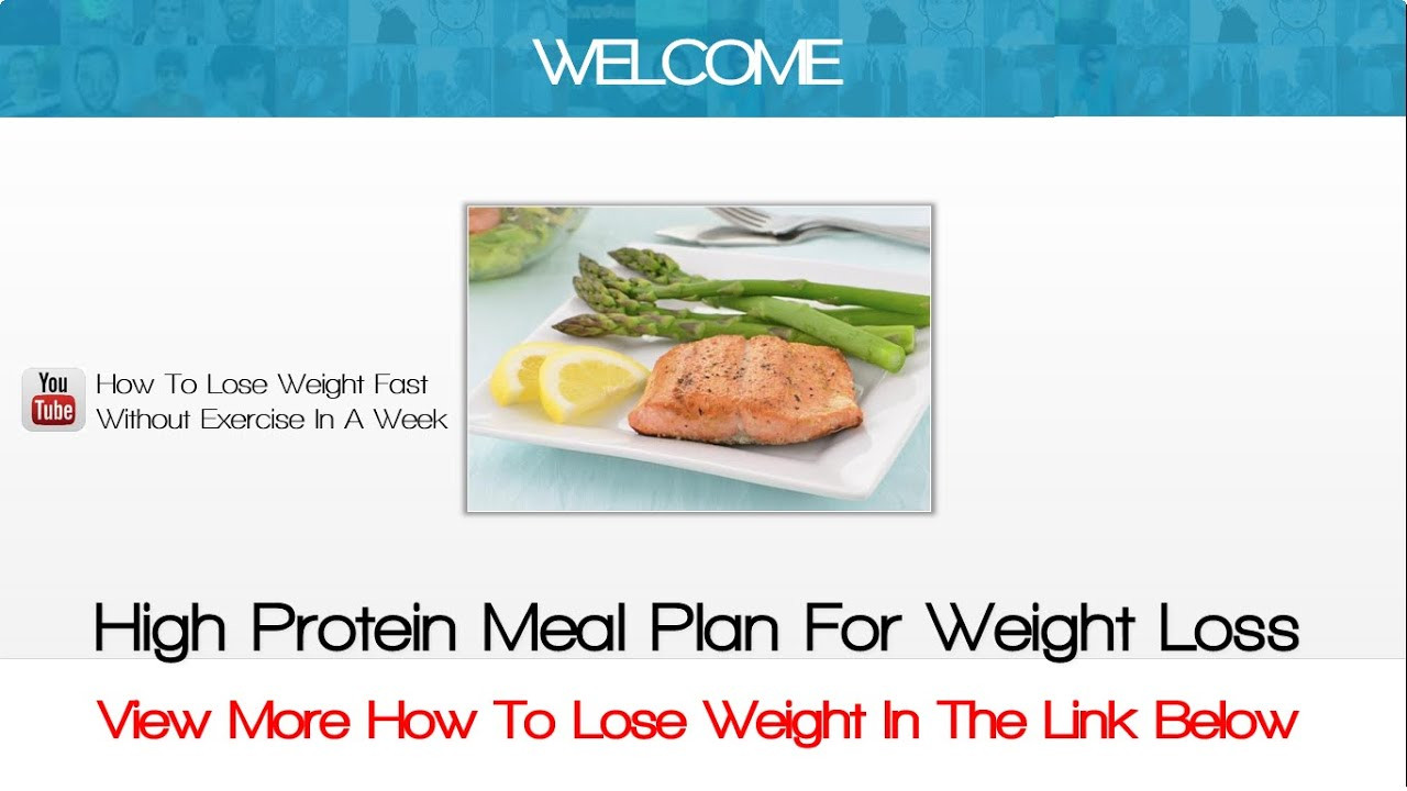 Protein Dinners For Weight Loss  High Protein Meal Plan For Weight Loss