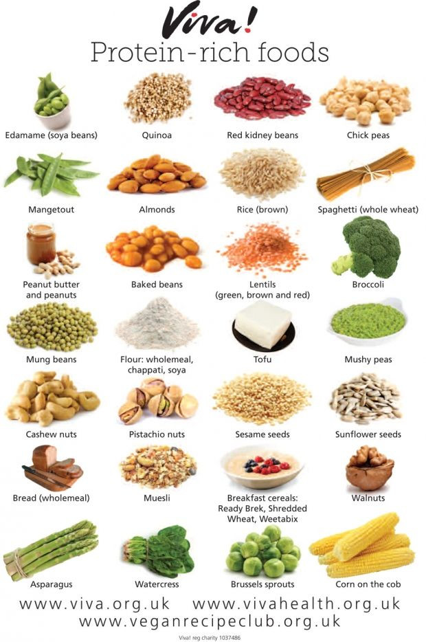 Protein Food For Vegetarian  VEGAN PROTEIN RICH FOODS Food Pinterest