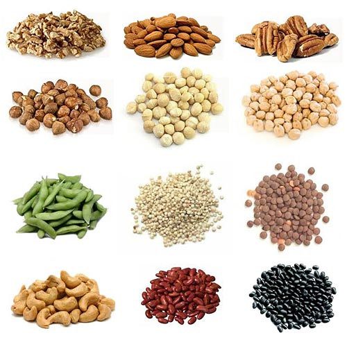 Protein Food For Vegetarian  protein