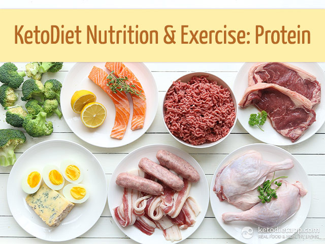 Protein For Keto Diet  Ketogenic Nutrition and Exercise Protein