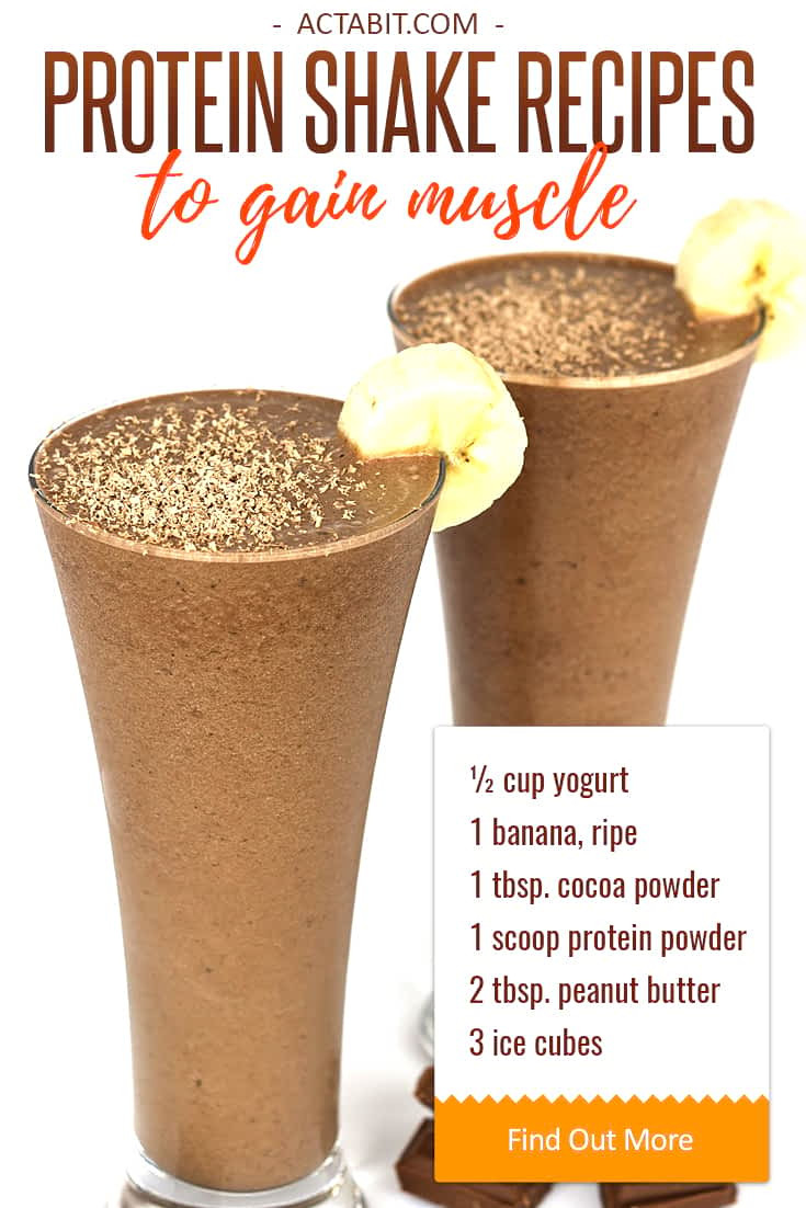 Protein Shakes Recipes For Weight Loss  Healthy Protein Shake Recipes to Gain Muscle