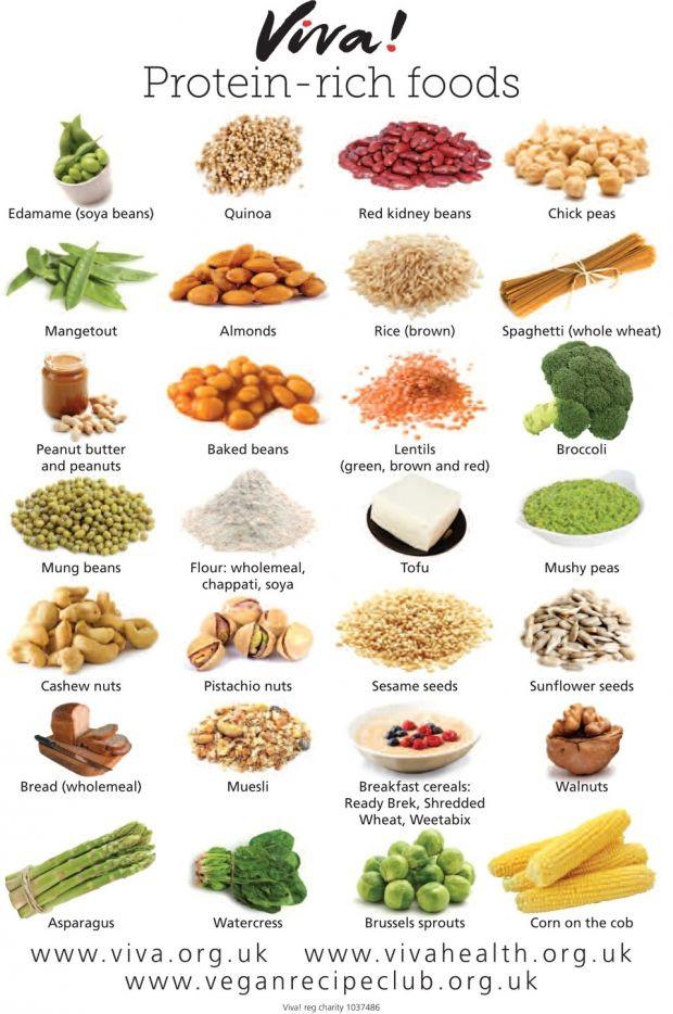 Protein Vegetarian Diets  VEGAN PROTEIN RICH FOODS Food Pinterest