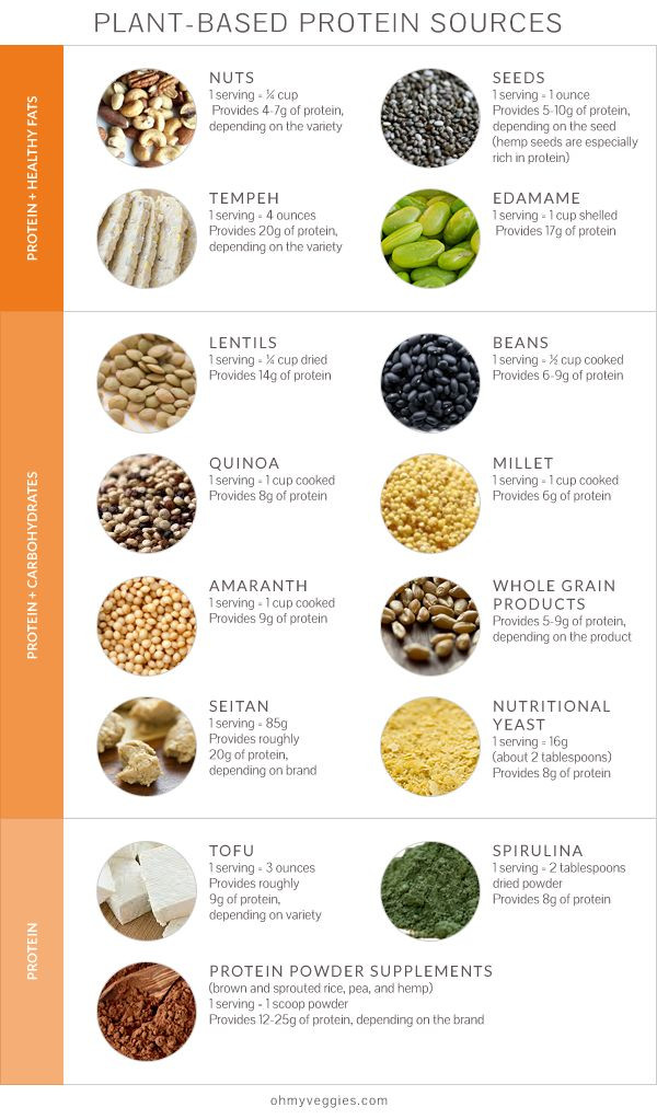 Protein Vegetarian Diets  What a High Protein Diet Can and Can t Do For You