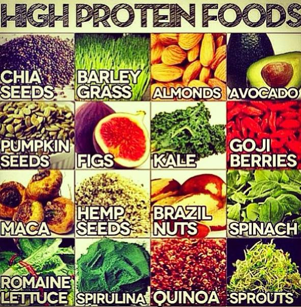 Protein Vegetarian Food  Best High Protein Food