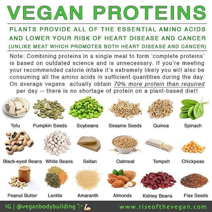 """Protein Vegetarian Food  Vegans often hear """"but where do you your protein"""