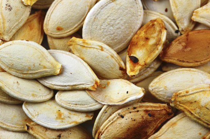 Pumpkin Seeds Weight Loss  Can Pumpkin Seeds Help You Lose Weight