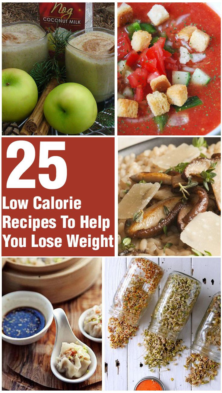 Quick Low Calorie Dinners  20 Quick And Healthy Low Calorie Dinner Recipes