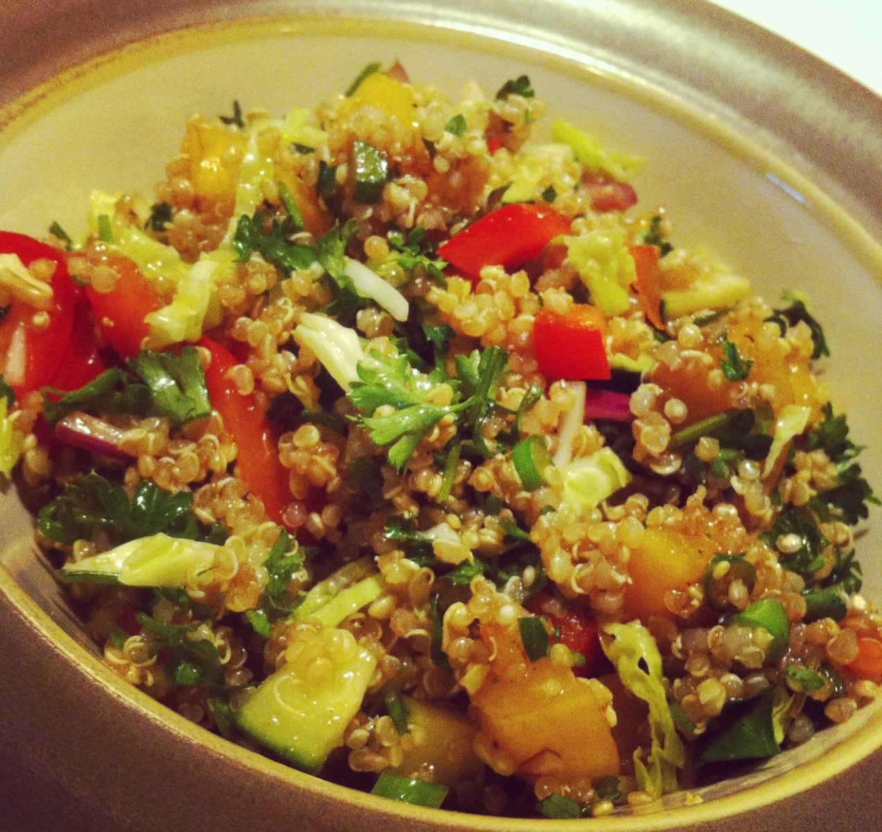 Quinoa Recipe Healthy  Quinoa Salad Healthy Recipes Clear Path Chiropractic