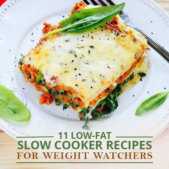 Slow Cooker Low Fat Recipes  11 Low Fat Slow Cooker Recipes for Weight Watchers