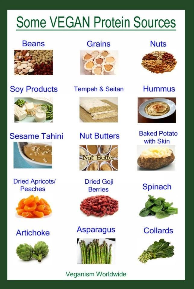 Sources Of Protein In Vegetarian Diet  21 best images about Staple Vegan Protien on Pinterest