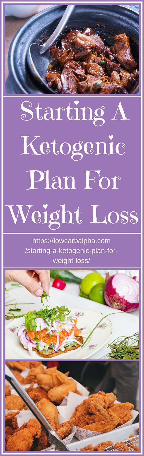 Starting Keto Diet  300 best Ketogenic Diet images on Pinterest