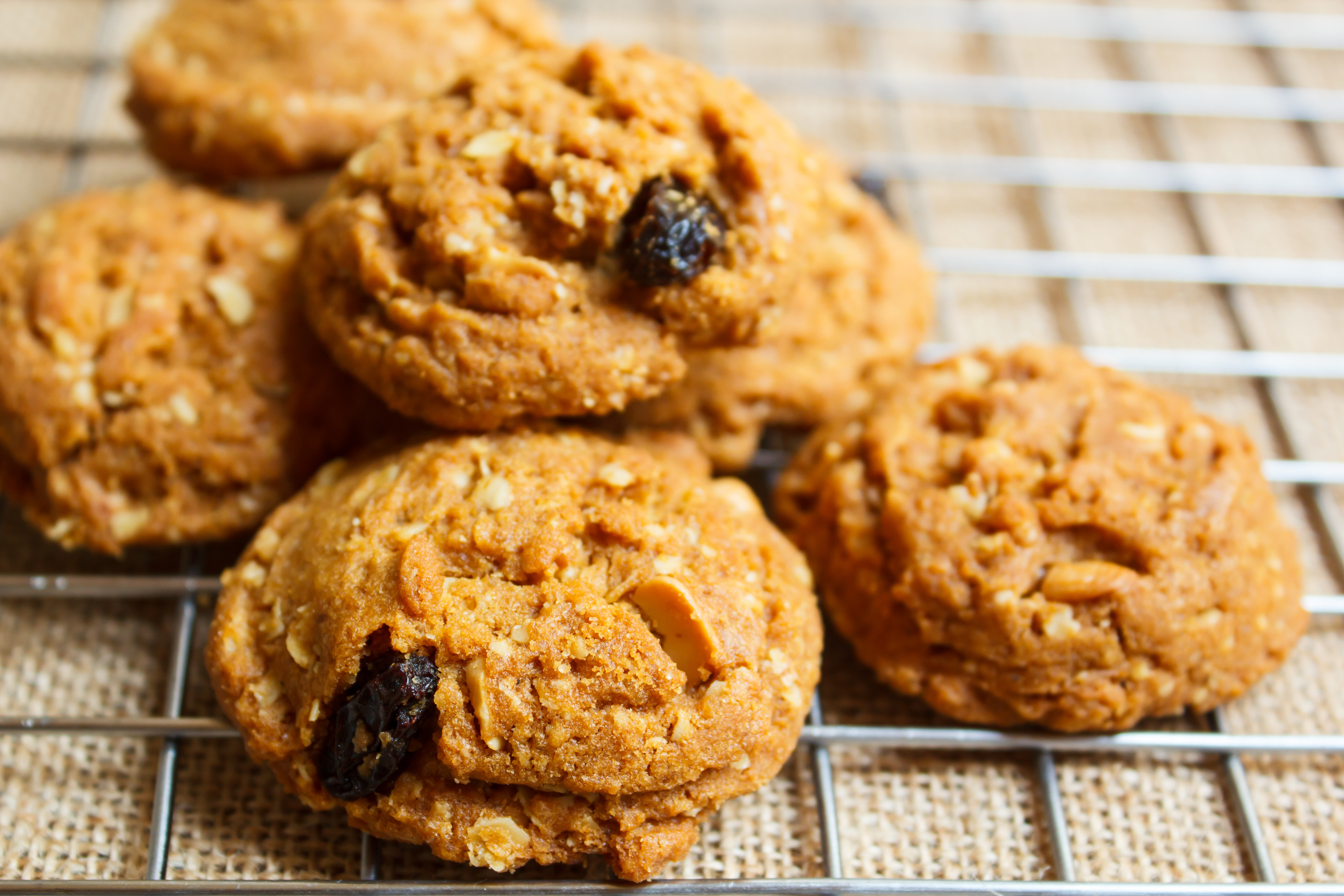 Sugar Free Oatmeal Raisin Cookies For Diabetics  Oatmeal Cookie Recipe for Diabetics